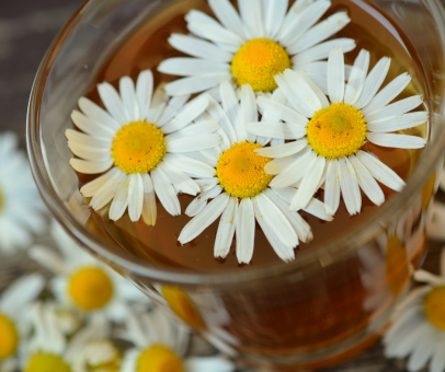 Chamomile tea with flowers floating on top