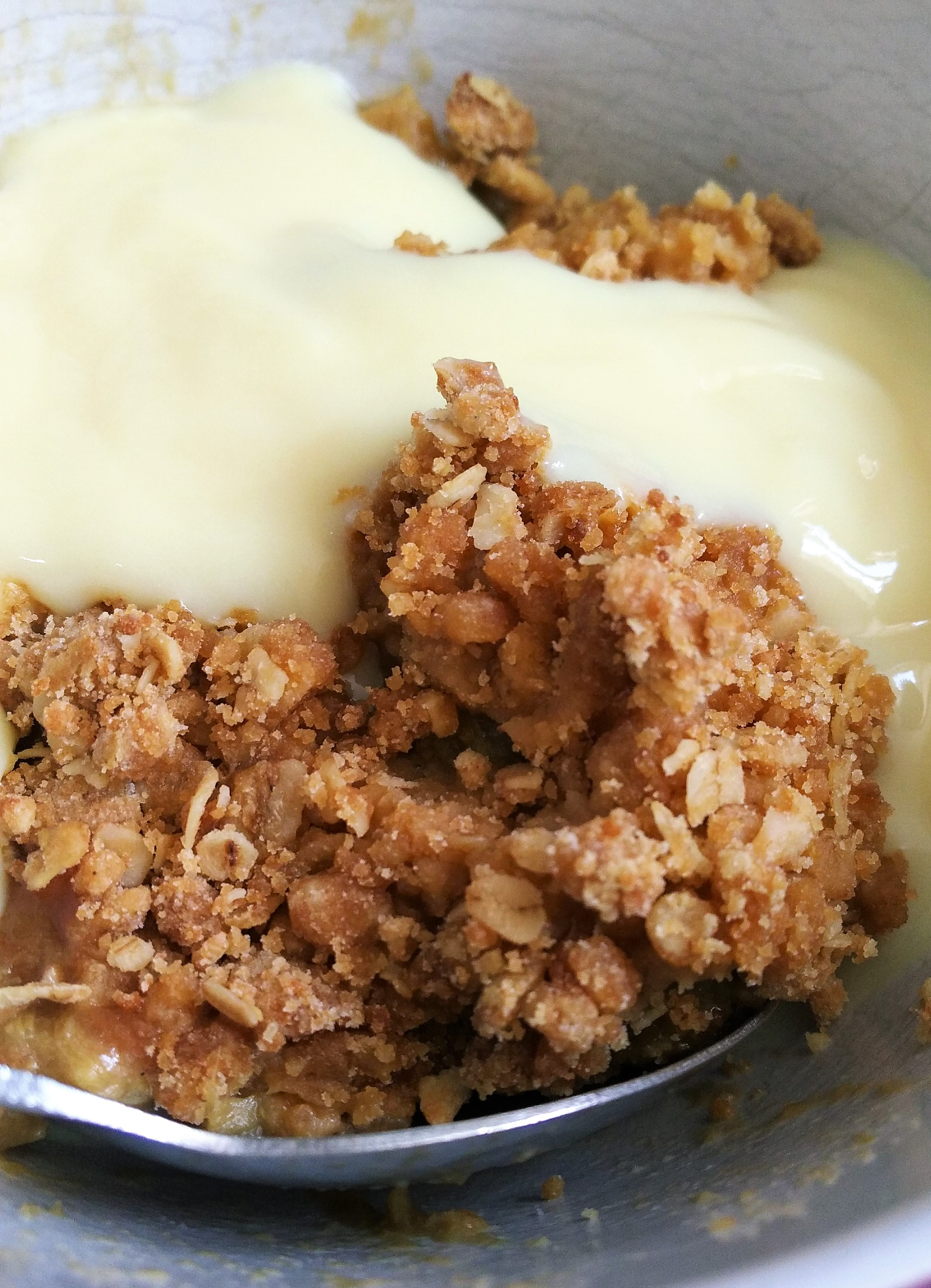 close up of gluten free vegan rhubarb and ginger crumble recipe served with dairy free custard