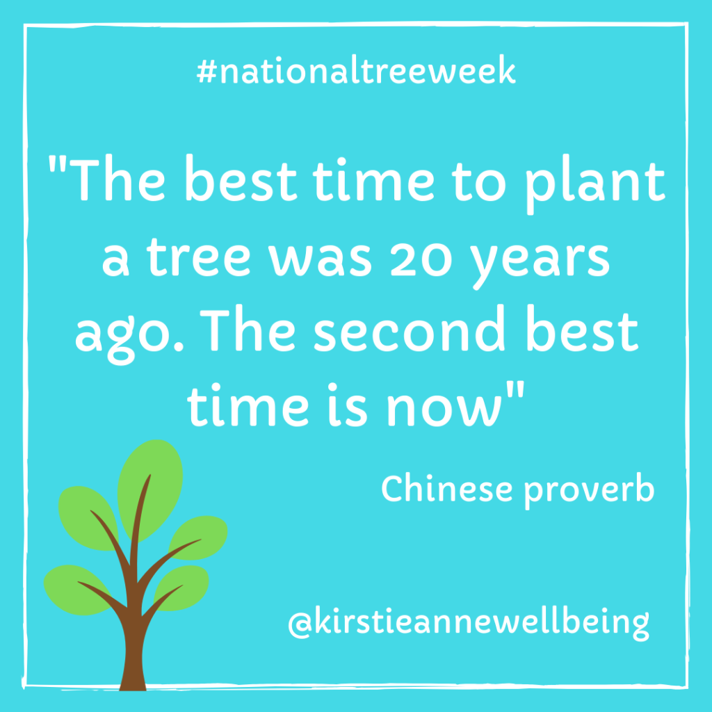 the best time to plant a tree was 20 years ago. The second best time is now quote Chinese proverb on a blue background
