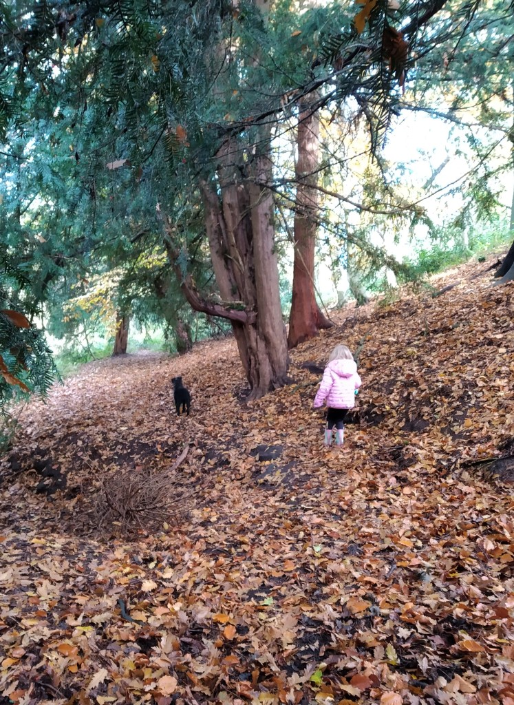 Using the senses on a nature walk to teach mindfulness to children. My daughter and our dog in the woods.